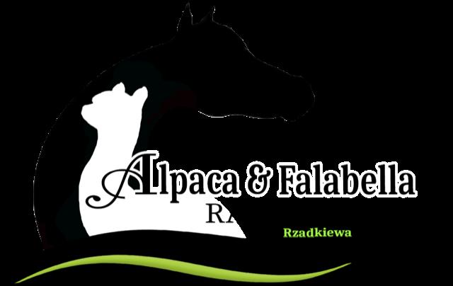 Logo Rzadkiewa